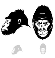 stylized gorilla head vector image vector image