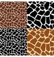 Coloring giraffe seamless pattern vector image