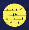 birds on wires5 vector image
