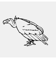 Hand-drawn pencil graphics vulture eagle osprey vector image