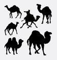 Camel and dromedaries animal silhouette vector image