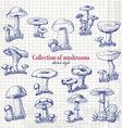 Collection of mushrooms in sketch style on paper vector image