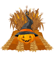 Pumpkin on corn maze vector image