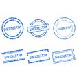 Premium stamps vector image