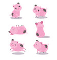 lovely pink pigs vector image