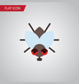 isolated fly flat icon buzz element can be vector image