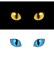 yellow cat eyes vector image vector image