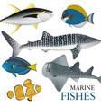 01 marine fish-02 vector image