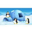 Three penguins near an igloo vector image vector image
