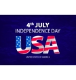 stylish american independence day design vector image