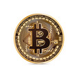 bitcoin coin on white background in vector image
