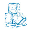 sketch of ice cubes vector image