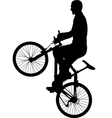 bicyclist vector image vector image
