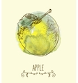 fresh useful eco-friendly apple vector image