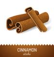 cinnamon icon vector image vector image