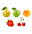 Five fruit stickers vector image vector image