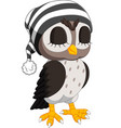cute owl cartoon vector image