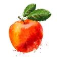 fruit logo design template Peach or Apple vector image