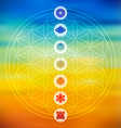 Sacred geometry with chakra icons colorful vector image