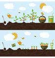 garden in flat style vector image vector image