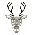 Isolated deer - vector image