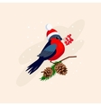 Bullfinch wearing a Hat on Branch with Cones vector image