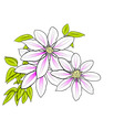 flower on the white background vector image vector image
