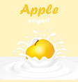 a splash of yogurt from a falling apple and a drop vector image