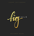 Big Sale offer text gold calligraphy handwritten vector image