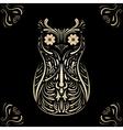 owl on black background vector image