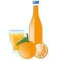 fresh orange and juice vector image