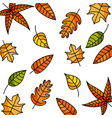 autumn leaves natural decoration foliage vector image