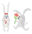rabbits and love vector image