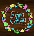 Inscription Spring is coming on wooden background vector image