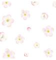 Apple Tree Flowers Background vector image