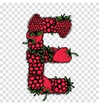 Letter E made from red berries sketch for your vector image