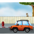 A car at the road and a cat above the fence vector image