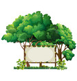 Banner template in the park vector image