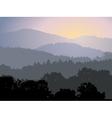 Evening panorama vector image