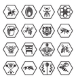 set of honey icons vector image