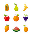 healthy organic vegetarian foods related icons vector image