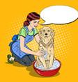 pop art happy woman washing labrador vector image