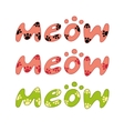 word meow vector image