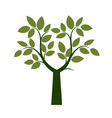 spring green tree vector image