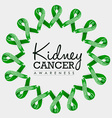 Kidney cancer awareness ribbon design with text vector image
