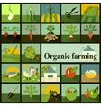 Set of icons Organic farming vector image