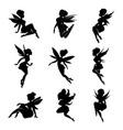 magical fairies in the cartoon style vector image