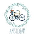 Cute Amsterdam card with tulips in bycicle basket vector image vector image