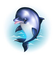 Dolphin cartoon against the background of the vector image