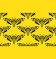 butterfly deaths head hawk moth seamless pattern vector image